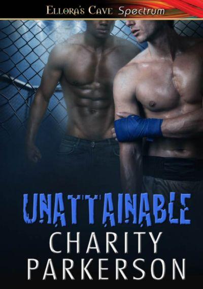 unattainable (1)