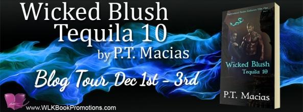 Wicked Blush -  banner